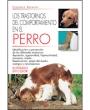 Los transtornos del comportamiento en el perro