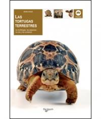 Las tortugas terrestres